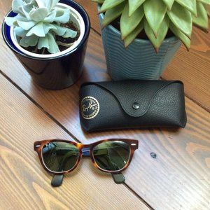 Ray-Ban Laramie Special Series RB4169 with case